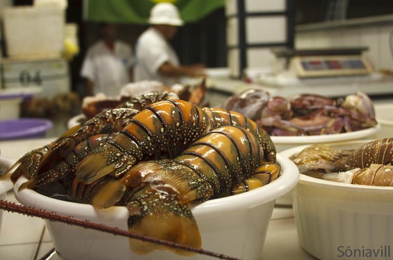 Notícias gastronômicas de Fortaleza