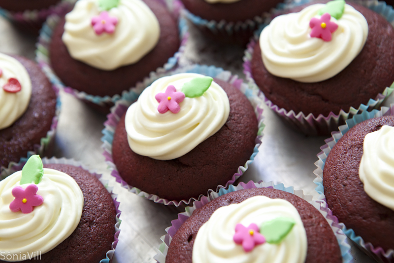 Red Velvet Cake ou cupcakes vermelhos