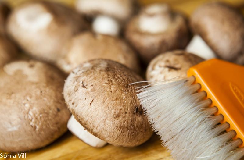Cogumelos castanhos
