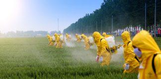governo libera agrotoxicos