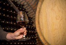 vinho vinhedo